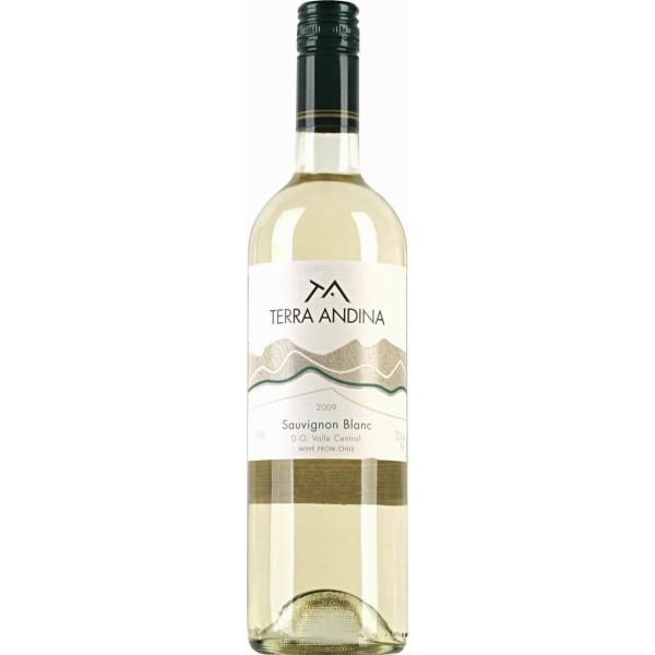 Вино Sauvignon Blanc Valle Central Terra Andina 0.75 л